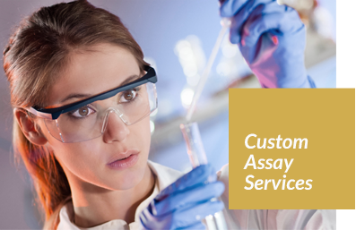 Custom Immunoassay services experts