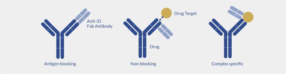 Types of anti-drug antibodies